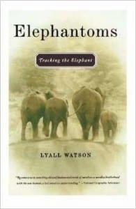Elephantom Cover