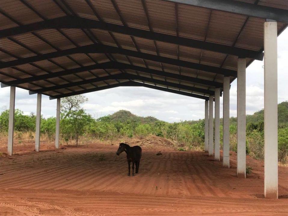African Elephant Barn