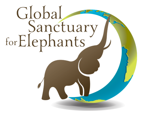 Global Sanctuary for Elephants