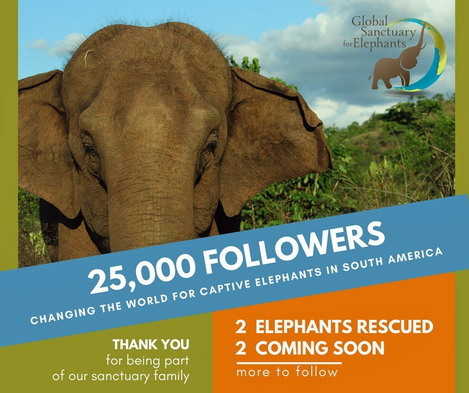 25,000 Followers On Facebook graphic