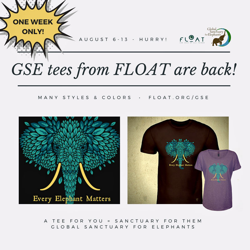 FLOAT T-shirt Promotional