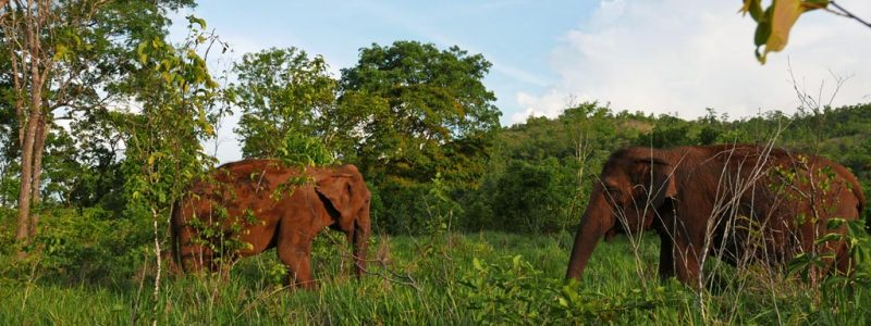 Maia-and-Guida-Kenya-Campaign-header-748