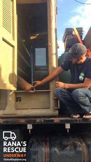 Scott and Rana during transport to sanctuary