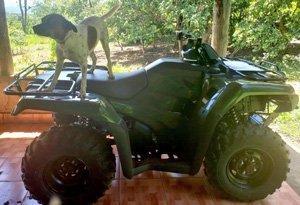 new 4-wheeler