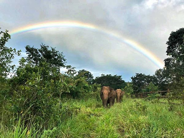 Maia, Guida and rainbows