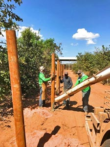 fence construction in the female African habitat