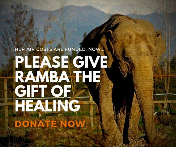 Ramba Care