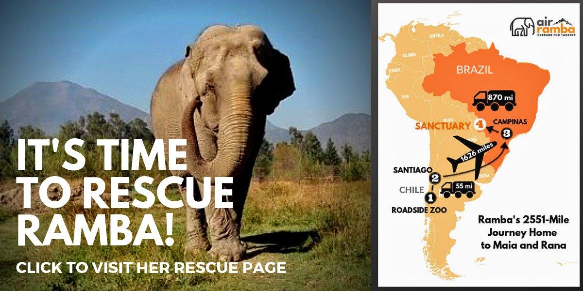 Ramba rescue map