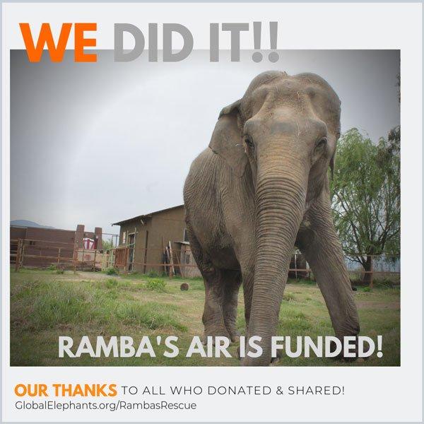 Ramba campaign