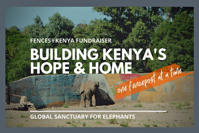 Fences4Kenya Slider