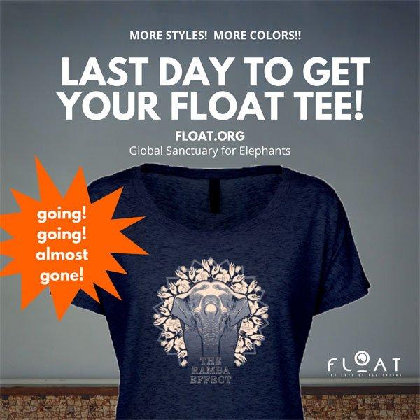 FLOAT graphic