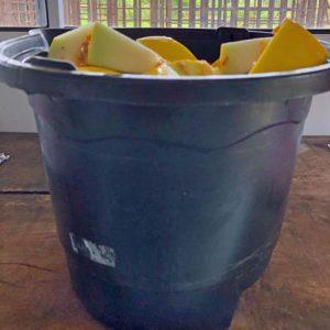 buckets'
