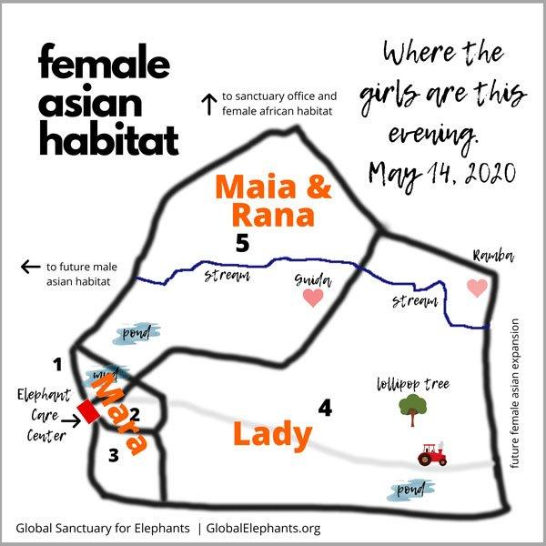 Asian habitat