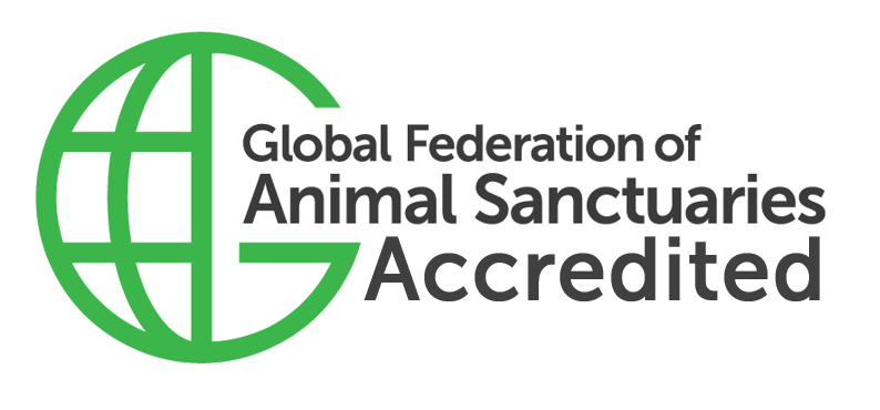 GFAS Accredited badge