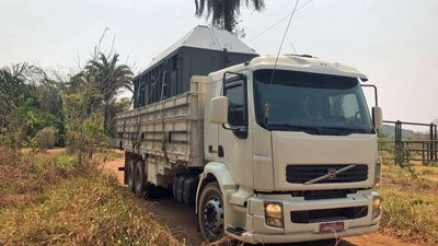 Bambi's transport leaving sanctuary for zoo
